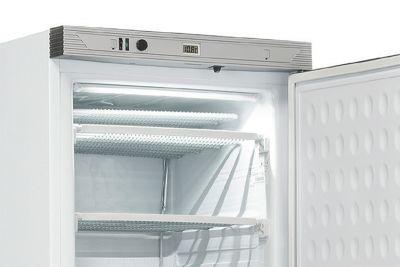 dettaglio-frigo-positivo-CHAF390N-chefline-02